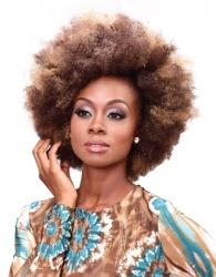 Beauty Elements - Realistic Afro Kinky Bulk 24""
